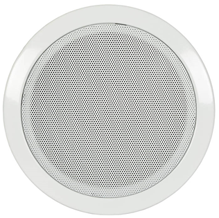 Ceiling Speaker with Fire dome