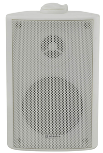 100 Volt Background Speaker 3