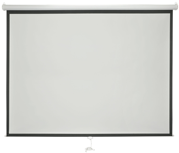 Manual Projector Screen 100