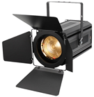 LED Zoom Fresnel 100w WW