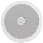 6.25 Ceiling Speaker with Directional%2